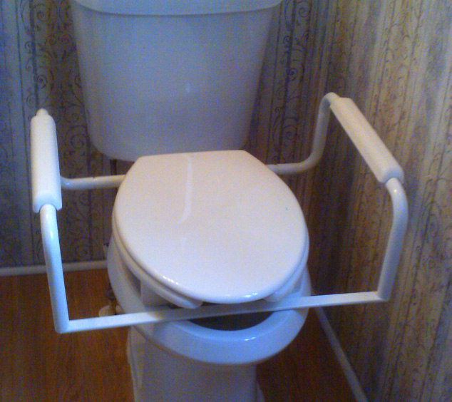 grab bar under toilet seat