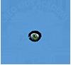 Creo Kids Academy